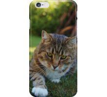 Stalking iPhone Case/Skin