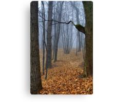 Foggy Wood Canvas Print