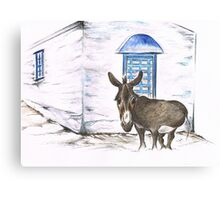 Greek Donkey Canvas Print