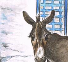 Greek Donkey Sticker
