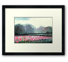 SPIRIT OF SPRING - ENCHANTED PINK TULIP-FIELD in the Park Framed Print
