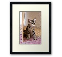 "Playing ""Hide & Seek"" Framed Print"