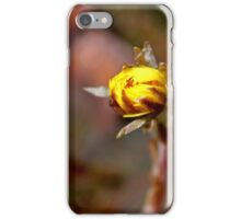 Coltsfoot II iPhone Case/Skin