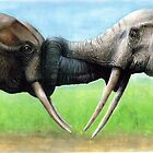 elephants embracing by Rob Mitchell