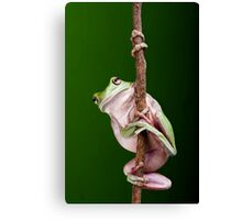 Pole Dancer Canvas Print