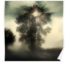 Otane Fog Poster