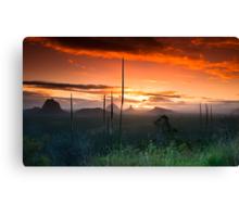 Glasshouse Mountains Sunset Canvas Print