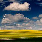 Green power. by Victor Pugatschew