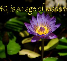 40 is an age of wisdom by Peri