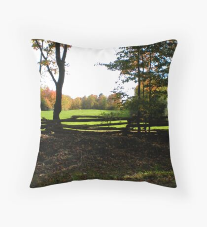 Country Quaint Throw Pillow