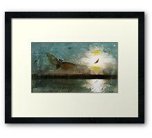River Blue Beetle Framed Print