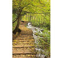 autumn leaves on steps , Plitvice Lakes, Croatia  Photographic Print