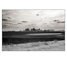 Farmland - Oswego, IL USA  Photographic Print
