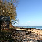 Priory Bay by Durotriges