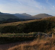 Evening in the Central Brecon Beacons by Michael Field