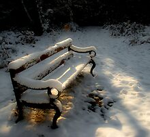 Bench in the Snow by Ann Garrett