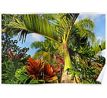 Tropical and Exotic... Poster