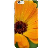 orange flower sun summer green iPhone Case/Skin