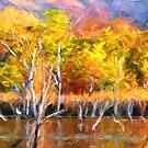 Colours of Kunnunurra 1 by Julia Harwood