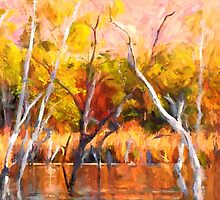 Colors of Kununurra 3 by Julia Harwood