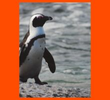 Furry African Penguin
