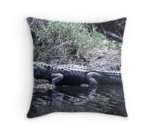 Gator at St Marks  Throw Pillow