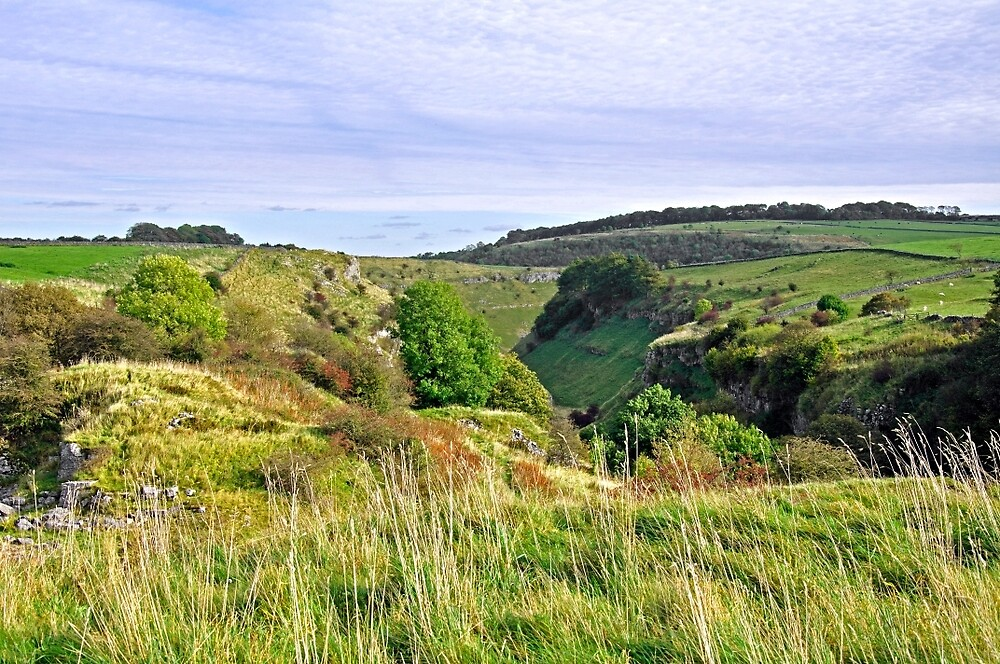 Looking Down into Lathkill Dale  by Rod Johnson