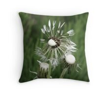 When I Get Older Losing My Hair........ Throw Pillow
