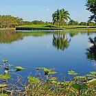 Lake in Weston, Florida by Zal Lazkowicz