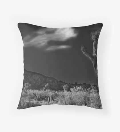 The Desert Knows Throw Pillow