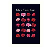 Like a Swiss Rose Art Print