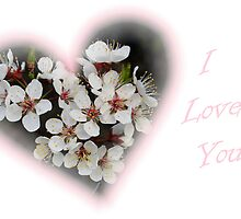 I Love You by Stephen Thomas