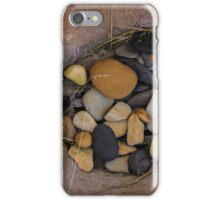 nest iPhone Case/Skin