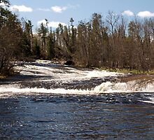 pine point rapids view by Cheryl Dunning
