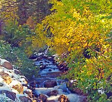 Autumn Stream 4 - Millcreek Canyon, Utah, USA by SteveOhlsen