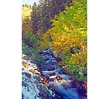 Autumn Stream 4 - Millcreek Canyon, Utah, USA Photographic Print