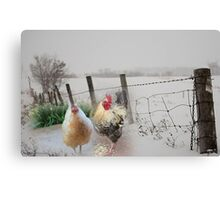 Farm talk - Making the best of winter Canvas Print
