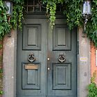 Doors by Sharon Selby