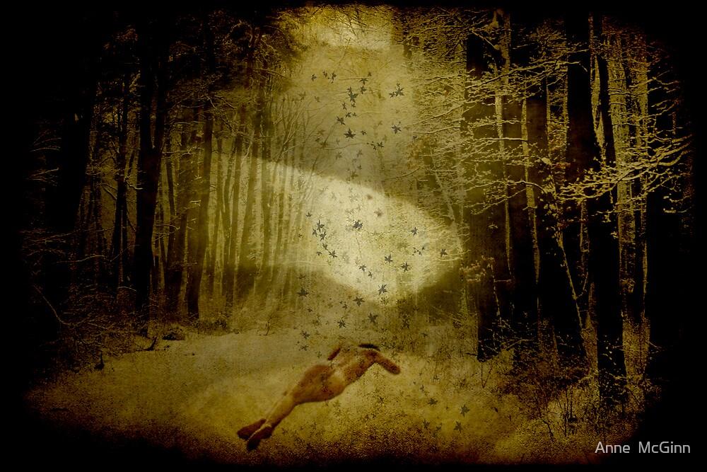 Here In Winter's Silence Sleep by Anne  McGinn