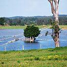 May Flood Series-- No way Through !!! by Heabar