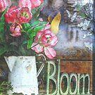 Bloom by wiscbackroadz