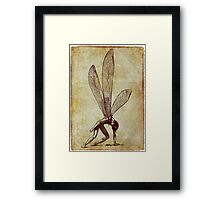 +Dragonfly_new version+ Framed Print