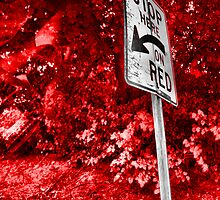 Stop Here On Red by Amy E. McCormick