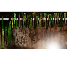 The cave wall Photographic Print