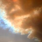 Smoke plume from the Kilmore, Hume Range bushfire, 7 Feb 2009. by Ern Mainka