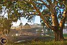 South Albury Railbridge 1 by mspfoto