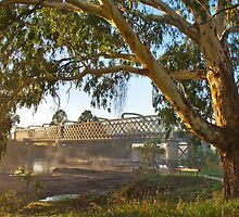 South Albury Railbridge 1 by mspfoto