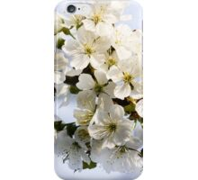 Blossoming sweet cherry iPhone Case/Skin