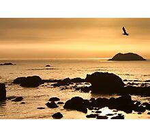 Seastacks Photographic Print