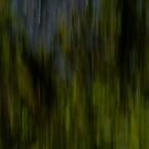 abstract green I by andreasphoto